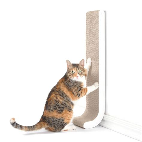 sofa that cats won t scratch amazing birthday gift ideas for the ones you