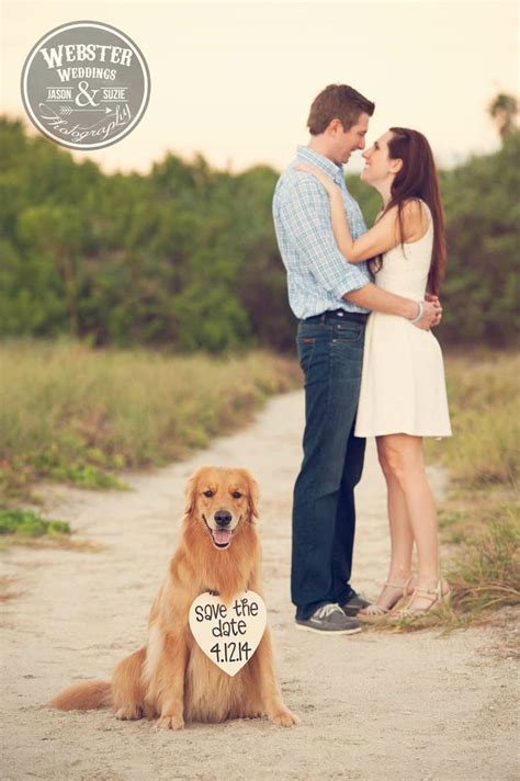 engagement photos with dogs 15 best pet friendly engagement images on engagement session central