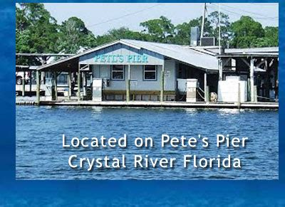 fishing boat rentals crystal river fl crystal river florida manatee tours swim with manatees