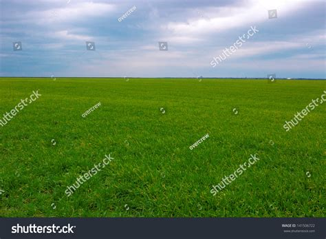 Landscape Photography In Cloudy Weather Beautiful Landscape Meadow On A Cloudy Day Weather And