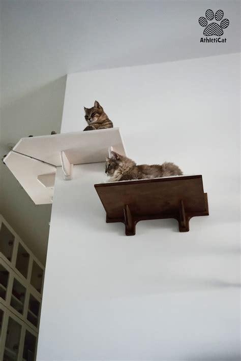 mensole ad angolo in legno mensola per gatti ad angolo in legno made in italy