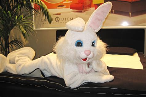 bunny bed easter bunny bed abt technology blog