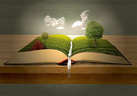 the book of nature and the nature of books the
