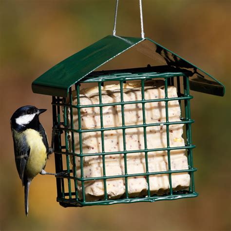 dual suet ball fat cake feeder rspb bird feeders rspb shop