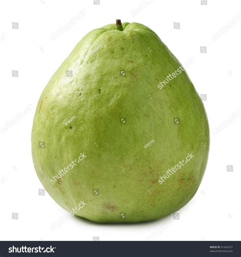 what color is guava single guava isolated against white fruit stock photo