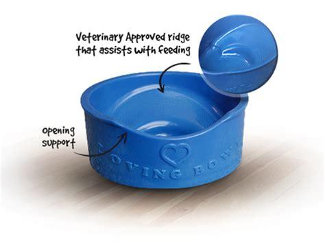 pug food bowls the loving bowl pug bowl pet bowl shih tzu bowl
