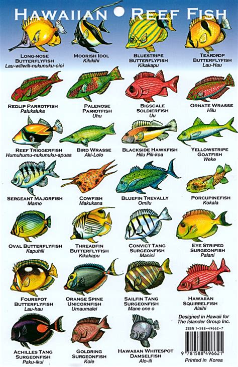 the ultimate guide to hawaiian reef fishes sea turtles hawaii reef fish chart the crazy thing is that these