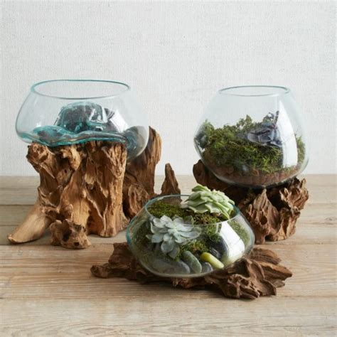 50 magical terrarium ideas to install in your home buzz 2017