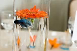 Beta Fish Plant Vase Ido It Myself Diy Fish Centerpieces