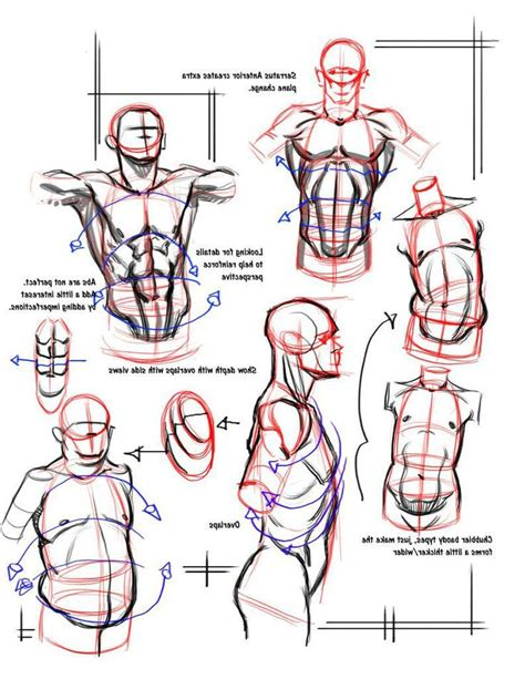 sketchbook recommendation 21 best images about torso on sketching