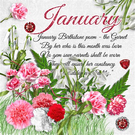 january birthstone color what is january birthstone color and flower monthly