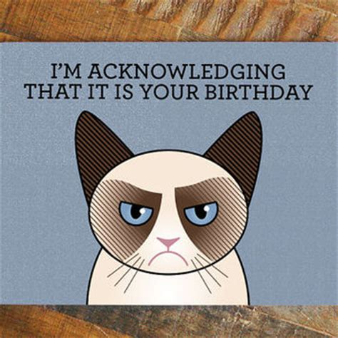 Cat Meme Birthday Cards