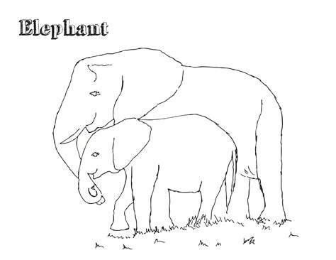 coloring book pages elephant free printable elephant coloring pages for