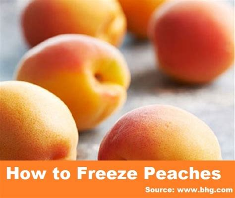 how to freeze home and tips