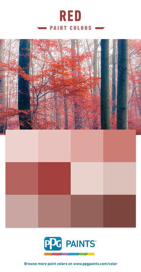 1000 images about paint color schemes on