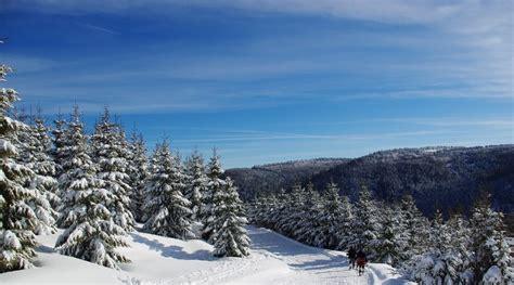 Ski Hutte by Cing Vosges Cing Hutte 224 La Bresse Proche De