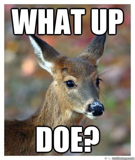 Doe Memes - what up doe memes quickmeme