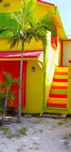 tropical colours 25 best ideas about tropical colors on pastel