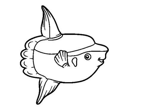 dibujos realistas para colorear dibujo de pez luna para colorear dibujos net