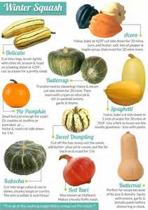 25 best ideas about squash types on pinterest baked