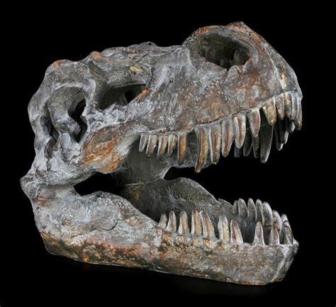 dinosaurier schlafzimmer accessoires totenkopf tyrannosaurus rex klein sch 228 skelett t