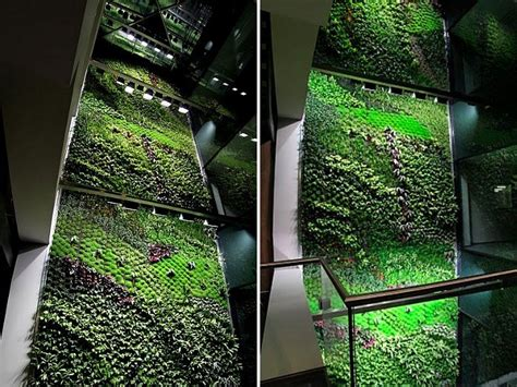 building an indoor garden spain s largest vertical garden cleans air inside office