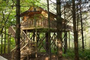 lodging in berlin ohio tree house amish country cabins