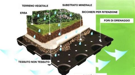 giardino pensile terrazzo realizzazione terrazzi e giardini pensili