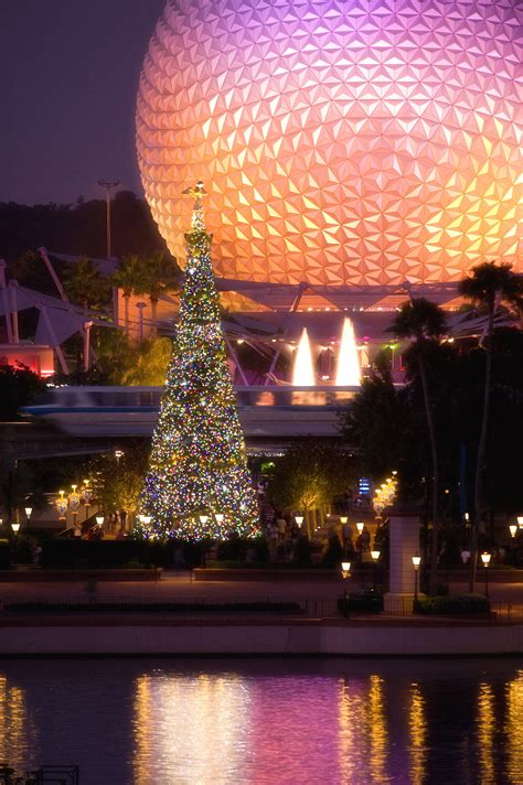 walt disney world s christmas by the numbers disney
