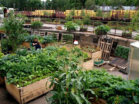 Terrace Vegetable Garden India Traditional Style Covered Vegetable Garden On Terrace India