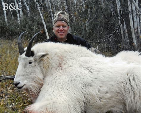 Idaho Records Trophy Bc Mountain Goat Verified As World Record The Spokesman Review