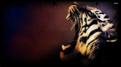Tiger Wallpaper Collection For Free Download