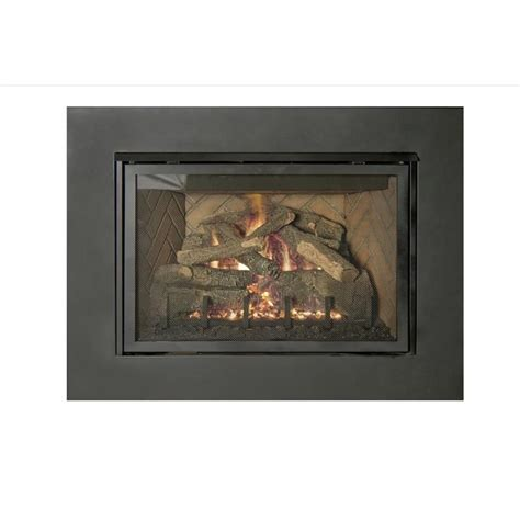 Real Fyre Fireplace by Real Fyre Direct Vent Gas Insert