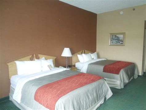 comfort inn newport tennessee comfort inn newport tn omd 246 men och prisj 228 mf 246 relse