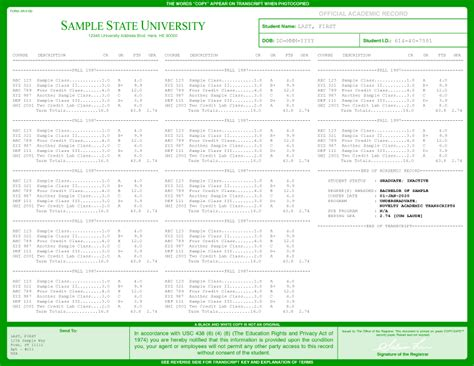 university transcripts template images