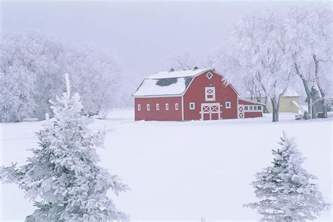 Red Barn Home Decor by Red Barn In Winter Oakbank Manitoba Photograph By Mike
