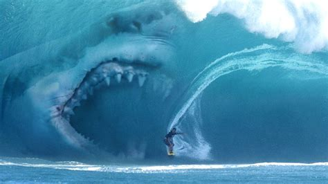 Shark In The megalodon in wave www pixshark images galleries