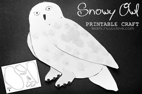 Paint Snowy Owls Tippytoe Crafts Preschool Books - snowy owl printable craft