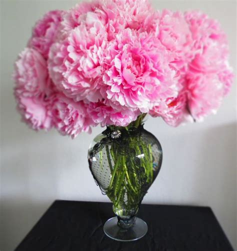 How To Arrange Peonies In A Vase by 17 Best Images About Botanical On Gerbera