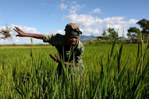 crisi alimentare facciamo il punto sulla crisi alimentare oxfam italia