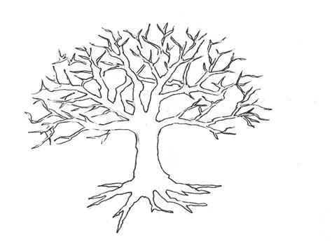 roots template coloring bare tree with roots coloring pages