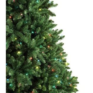 logged netted christmas trees in manchester trimming traditions 7 5 500 multicolor light pre lit manchester pine tree
