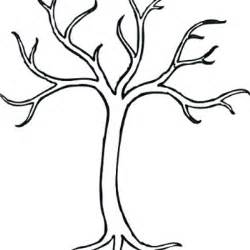 tree without leaves template clipart best