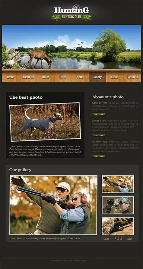 free download best flash html php css templates full