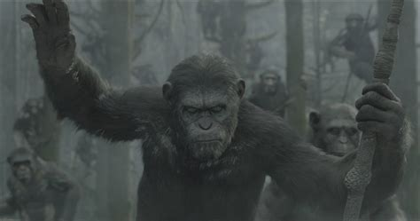 awn of the planet of the apes et tu caesar watch the first trailer for dawn of the