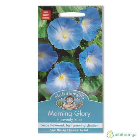 Benih Bunga Mr Fothergills Import Cornflower Blue benih morning heavenly blue 45 biji mr fothergills