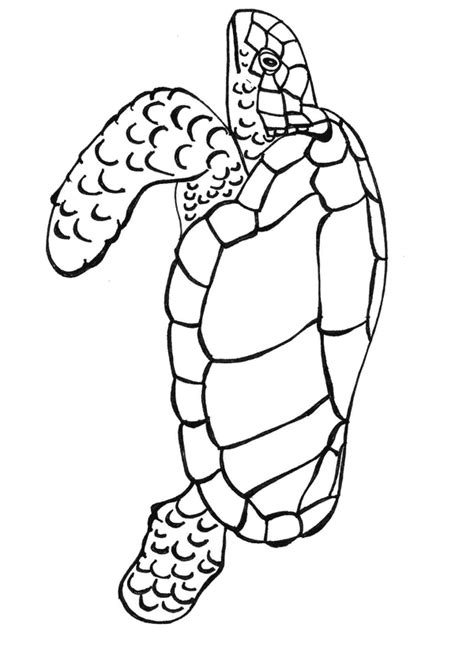 leatherback turtle coloring page leatherback sea turtle coloring page animals town free
