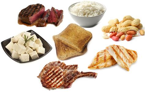 protein for protein food www pixshark images galleries