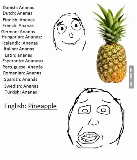 Ananas Pineapple Meme - 25 best memes about pineapple name pineapple name memes