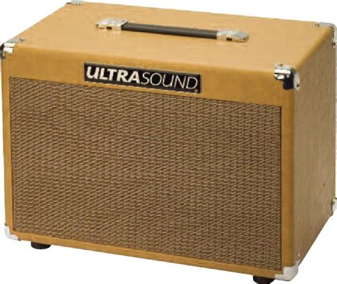 Designing Speaker Cabinets by Ultrasound Xtc 50w 2x8 Acoustic Guitar Speaker Cabinet